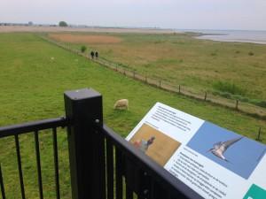 De uitkijktoren bij de haven van Battenoord die uitkijkt over de Grevelingen